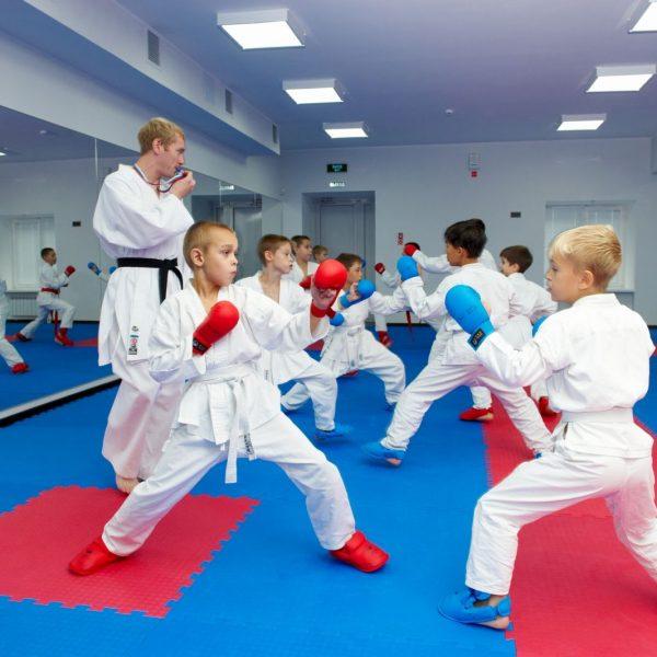 dvor2 600x600 - Дети и спорт