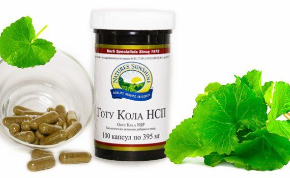 Gotu Kola 570x350 - Биологически активная добавка от NSP Готу Кола
